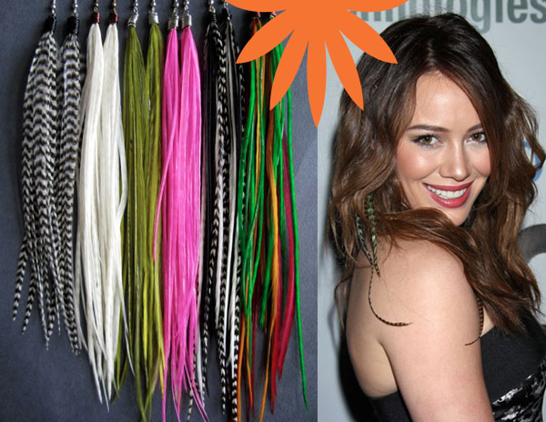 Feather hair extensions chicago il lakeview feather hair extensions chicago il pmusecretfo Image collections